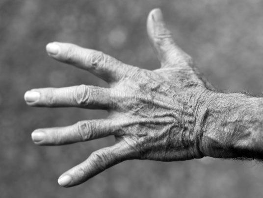 Reumatologia i ortopedia